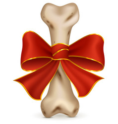 Bone for dog canine snack gift with red ribbon vector