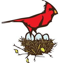 Cardinal Nest vector image
