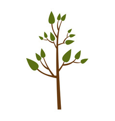 Colorful silhouette of small tree with leaves vector