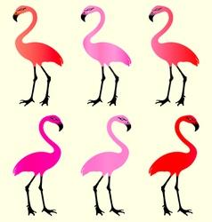 Flamingo 6 Color Variations vector