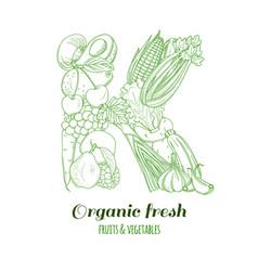 Letter k pattern logo organic farm fresh fruits vector