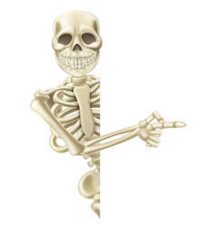 pointing cartoon halloween skeleton vector image