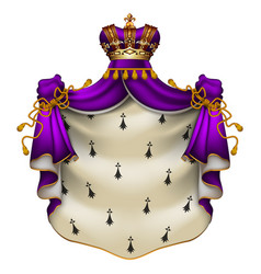 royal ermine mantle heraldic vector image