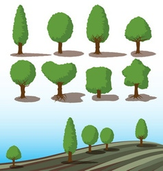 set green trees with shadows vector image