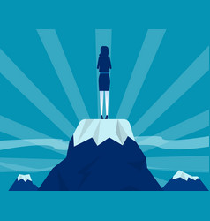 successful businessman standing on mountain and vector image