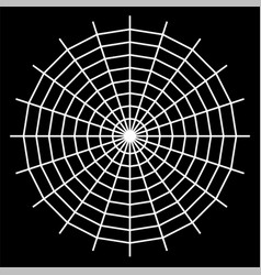 white spider on background vector image