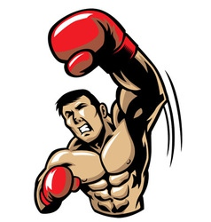 boxing man punch vector image vector image