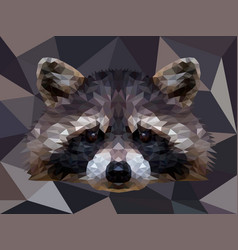 Polygonal raccoon isolated on white low vector