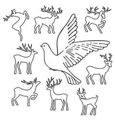 Soaring dove deers vector image