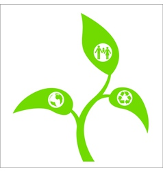 Eco sprout vector