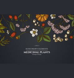 Floral design on dark background with aloe vector