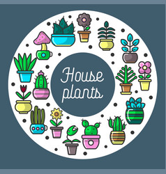 house plants set in circular position on poster vector image