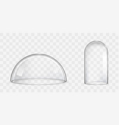 Spherical glass dome bell jar realistic vector