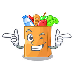 Wink food pouch bags isolated on mascot vector