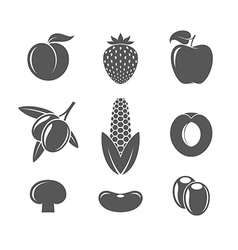 Fruit and vegetables vector image vector image