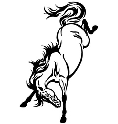 bucking horse tattoo vector image vector image
