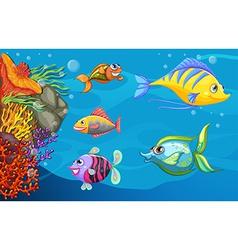 A school of fish under the sea vector