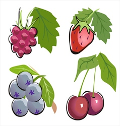 Different berry icon set in cartoon ctyle vector