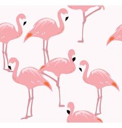 Flamingos vector