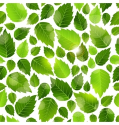 Fresh green leaves seamless background pattern vector