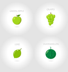 green apple grapes lime watermelo vector image