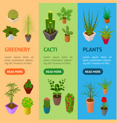 green plants in pot banner vecrtical set 3d vector image