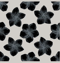 seamless pattern with hand drawn stylized plumeria vector image