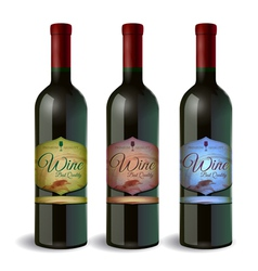 set wine bottle with label wine and grapes vector image