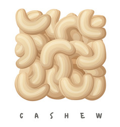 cashew nuts square icon cartoon vector image