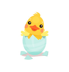 Cute little yellow duck chick character hatching vector