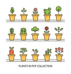 Flat icons set of pot plants garden vector