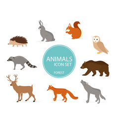 forest animals birds vector image