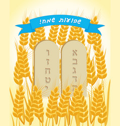 Holiday of shavuot stone tablets ears wheat vector