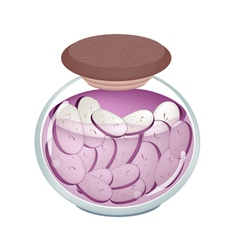 Pikled Slice Purple Eggplant in A Jar vector