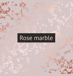 Rose marble decorative pattern for design vector