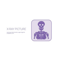 x ray picture image template web banner with copy vector image