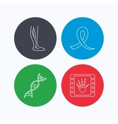 Phlebology DNA and X-ray icons vector image