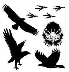 egle vector image