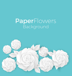 Flowers background with paper blooming white 3d vector