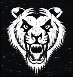 Grunge Tiger Head vector image