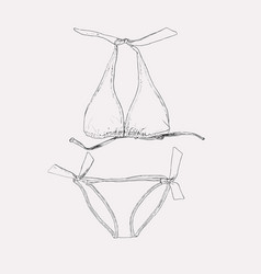 set of swimwear vector image