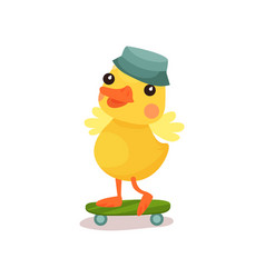 cute little yellow duck chick character in grey vector image