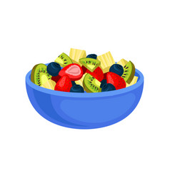 flat icon of appetizing fruit salad sliced vector image