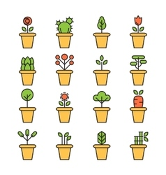 Flat icons set of pot plants garden vector