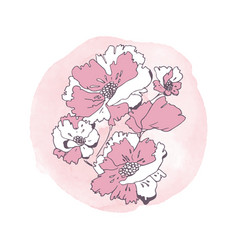 Hand drawn poppies vector