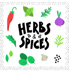 Herbs and spices concept design vector