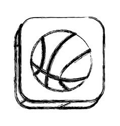 monochrome sketch of square button with basketball vector image