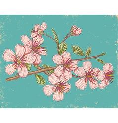 Sakura 2017 card vector image
