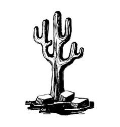 carnegiea giant caguaro cacti vector image
