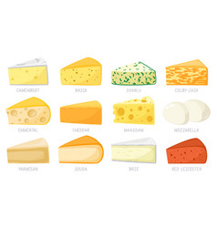 Cartoon cheese types cheese triangles cheddar vector